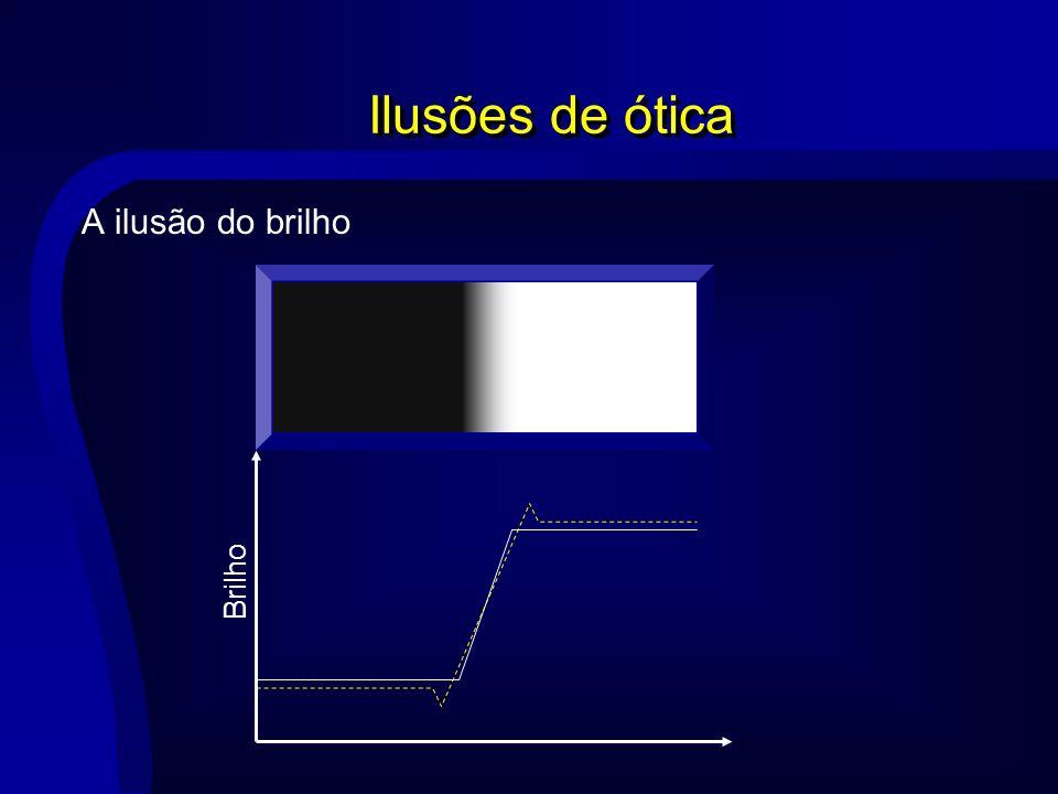 Ilusões de ótica A ilusão do brilho Brilho