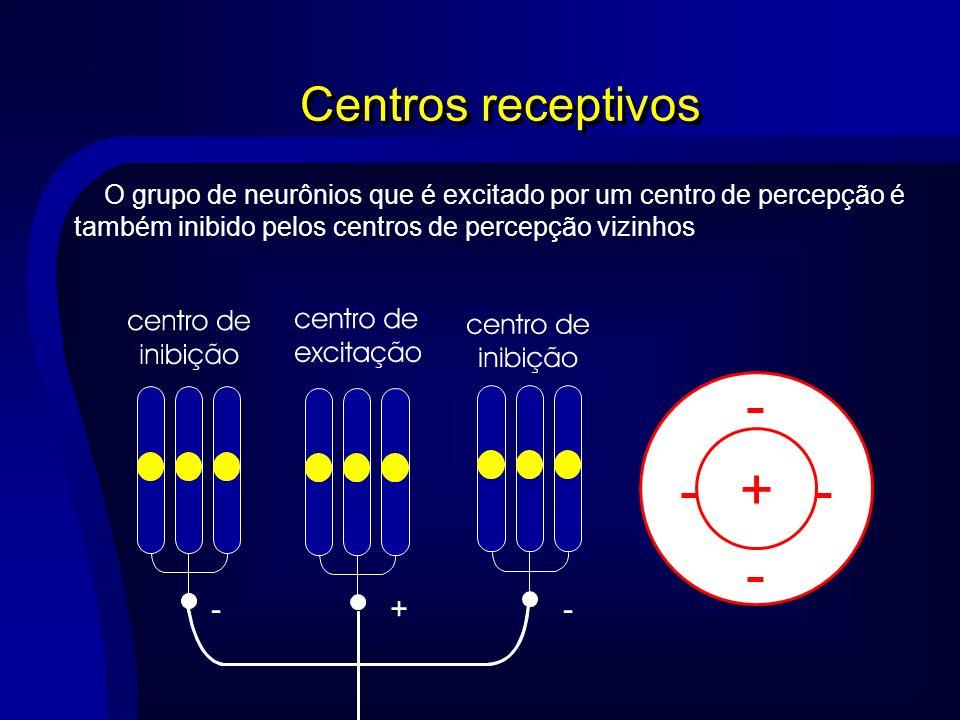 - - - + Centros receptivos + -