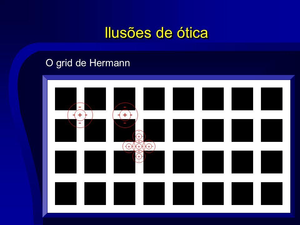 Ilusões de ótica O grid de Hermann + - - - - - - +