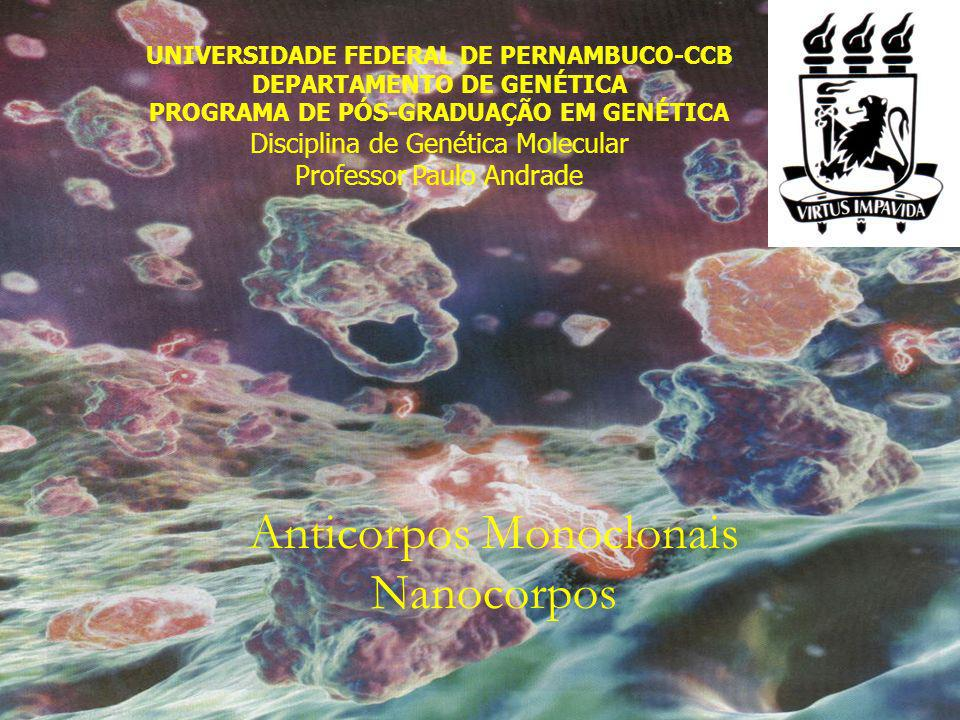 Anticorpos Monoclonais Nanocorpos