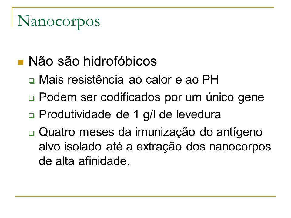 Nanocorpos Não são hidrofóbicos Mais resistência ao calor e ao PH
