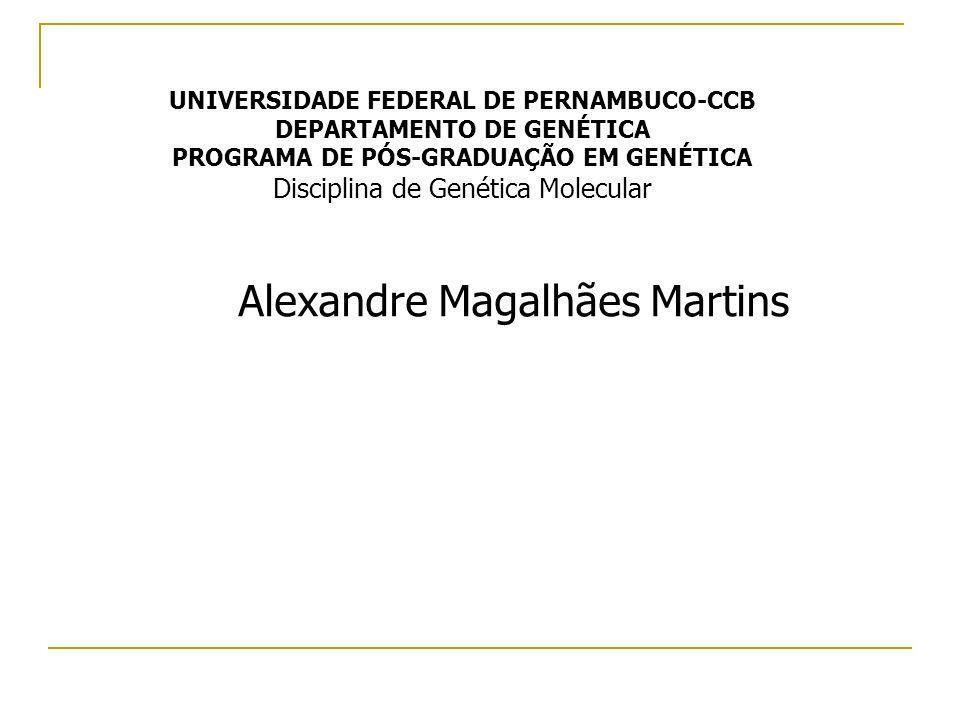 Alexandre Magalhães Martins