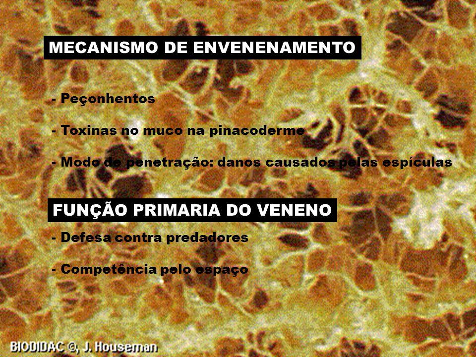 MECANISMO DE ENVENENAMENTO