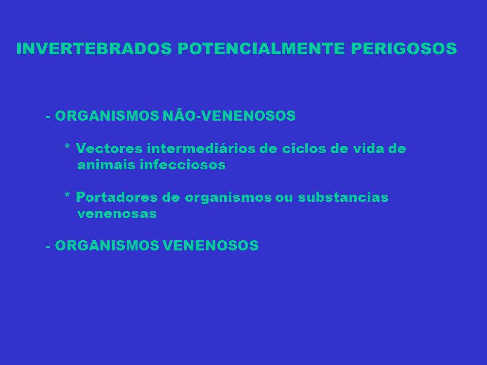 INVERTEBRADOS POTENCIALMENTE PERIGOSOS