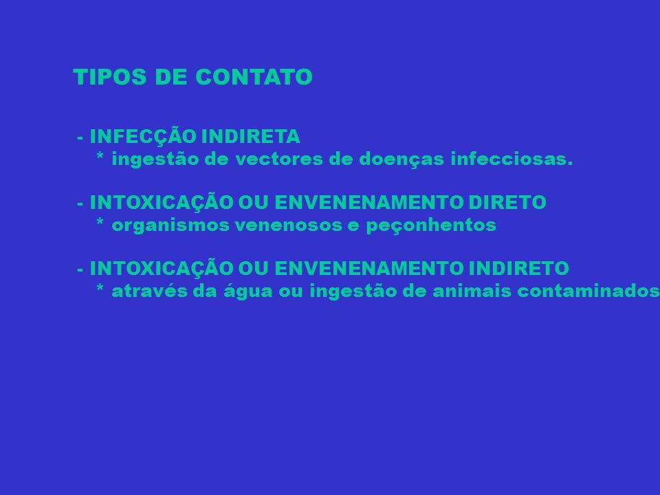 TIPOS DE CONTATO - INFECÇÃO INDIRETA