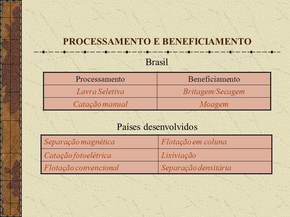 PROCESSAMENTO E BENEFICIAMENTO