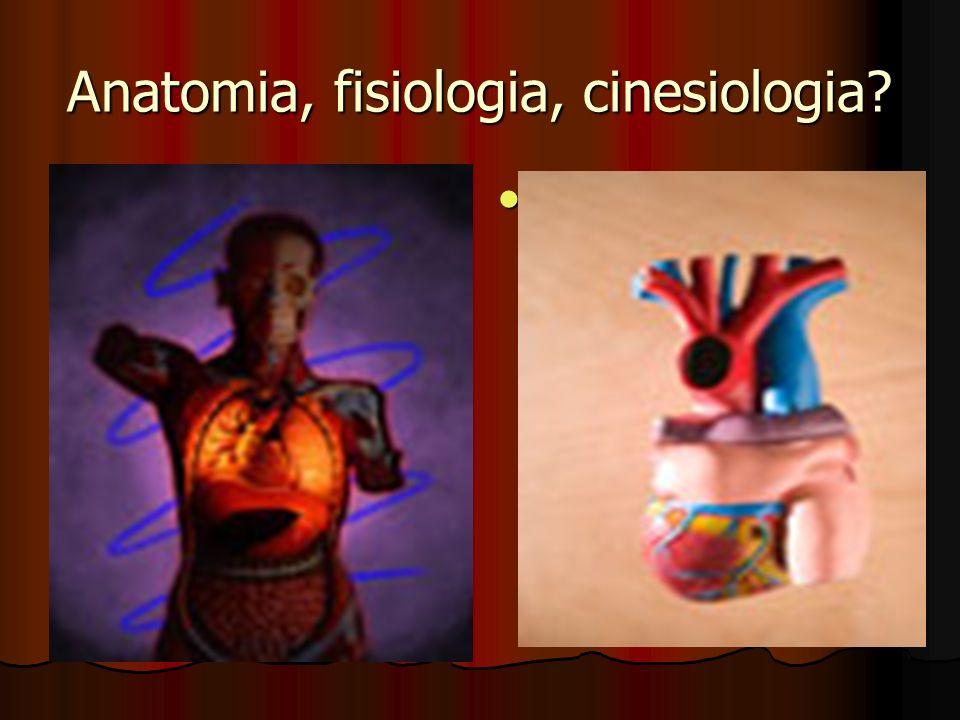 Anatomia, fisiologia, cinesiologia