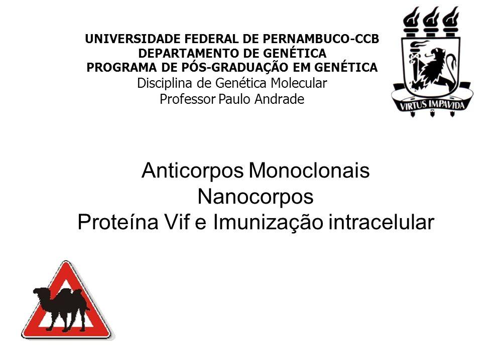 UNIVERSIDADE FEDERAL DE PERNAMBUCO-CCB