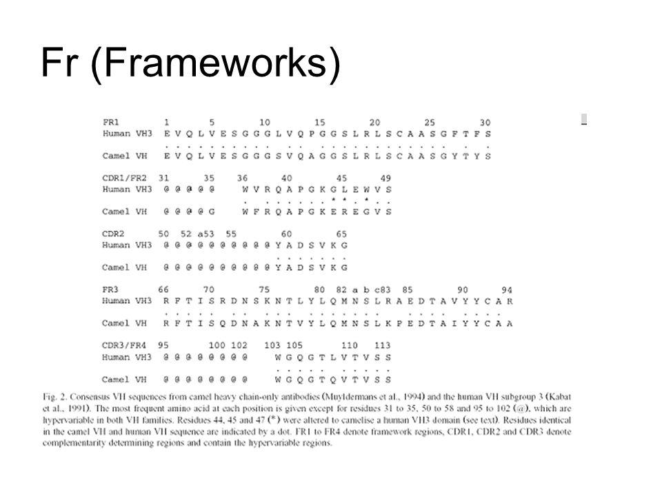 Fr (Frameworks)