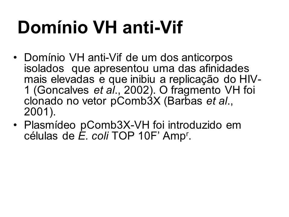Domínio VH anti-Vif