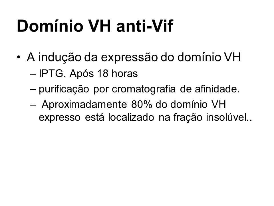 Domínio VH anti-Vif A indução da expressão do domínio VH