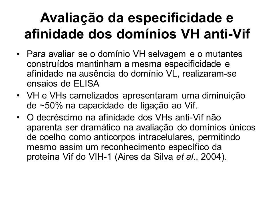 Avaliação da especificidade e afinidade dos domínios VH anti-Vif