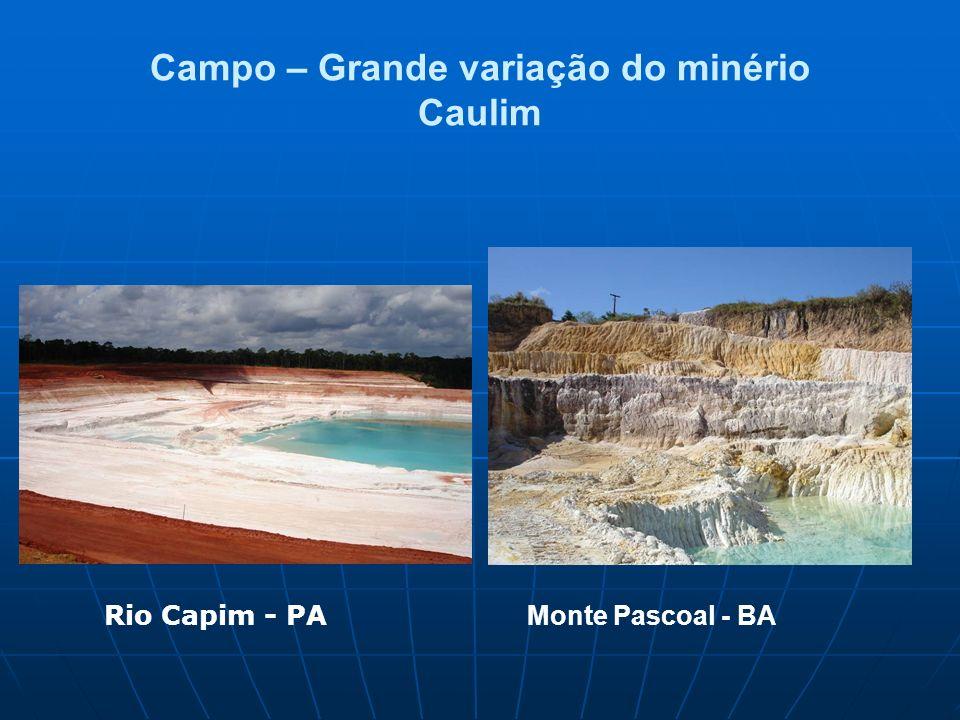 Campo – Grande variação do minério Caulim