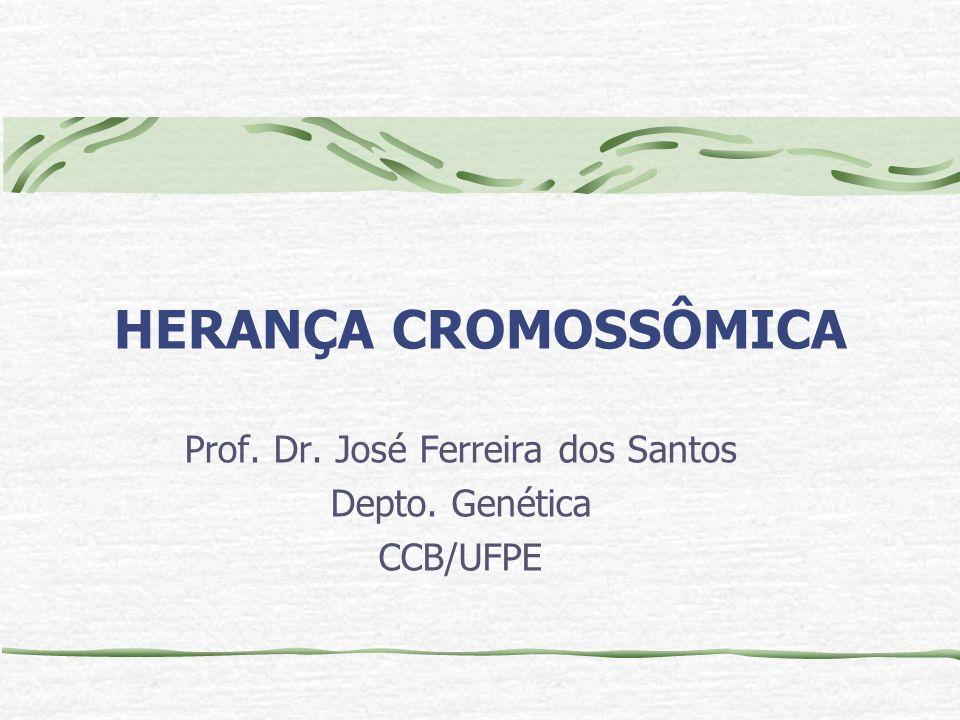 Prof. Dr. José Ferreira dos Santos Depto. Genética CCB/UFPE