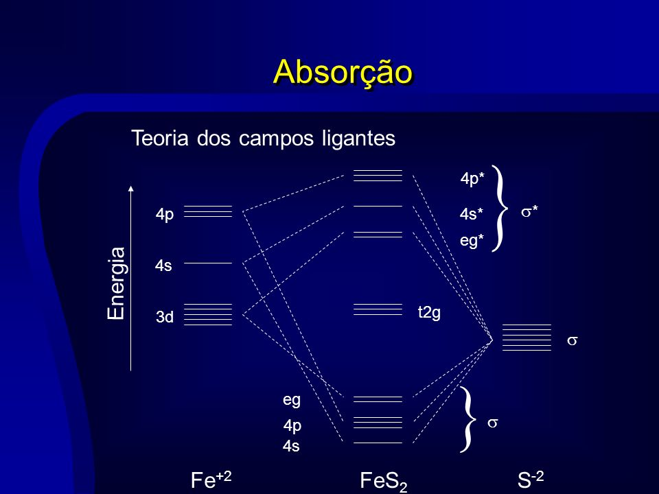 Teoria dos campos ligantes