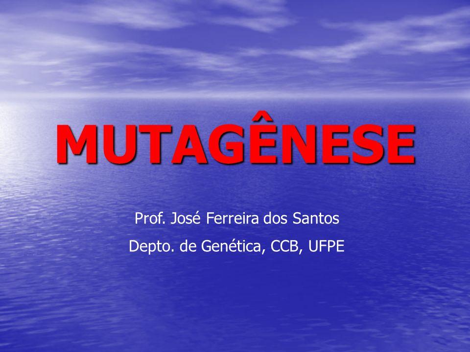 MUTAGÊNESE Prof. José Ferreira dos Santos