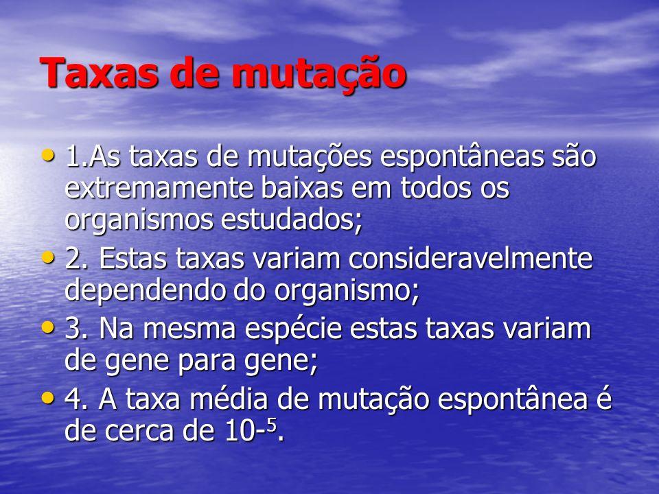 Taxas de mutação 1.As taxas de mutações espontâneas são extremamente baixas em todos os organismos estudados;