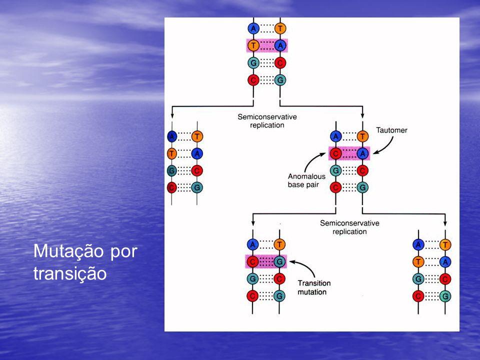 Mutação por transição