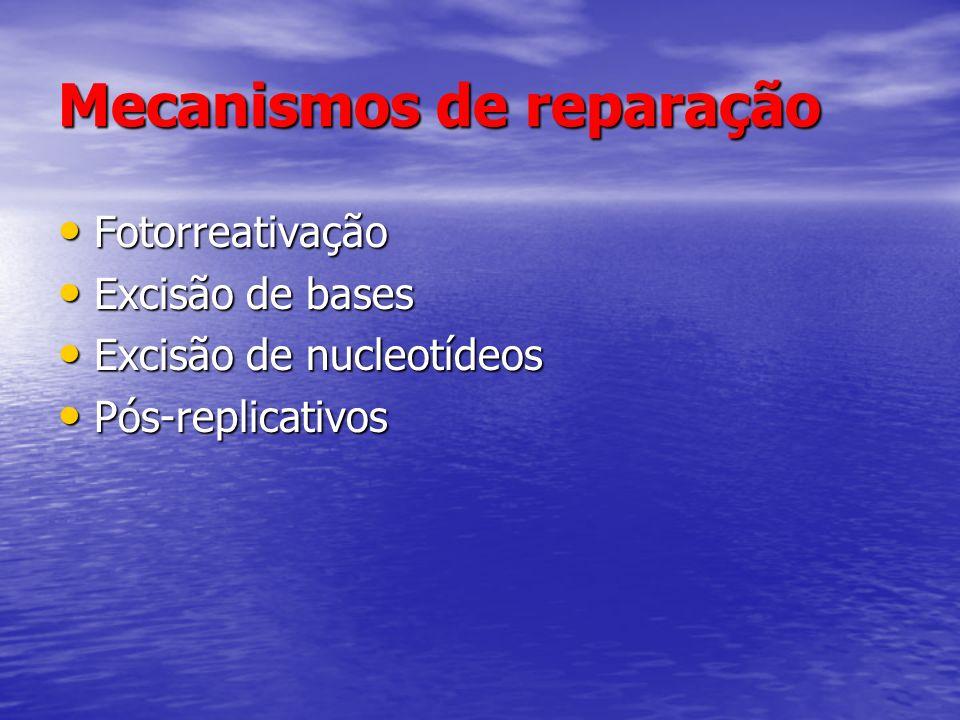 Mecanismos de reparação