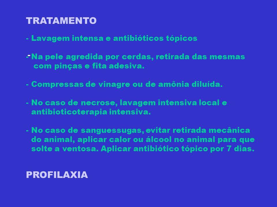 TRATAMENTO PROFILAXIA - Lavagem intensa e antibióticos tópicos