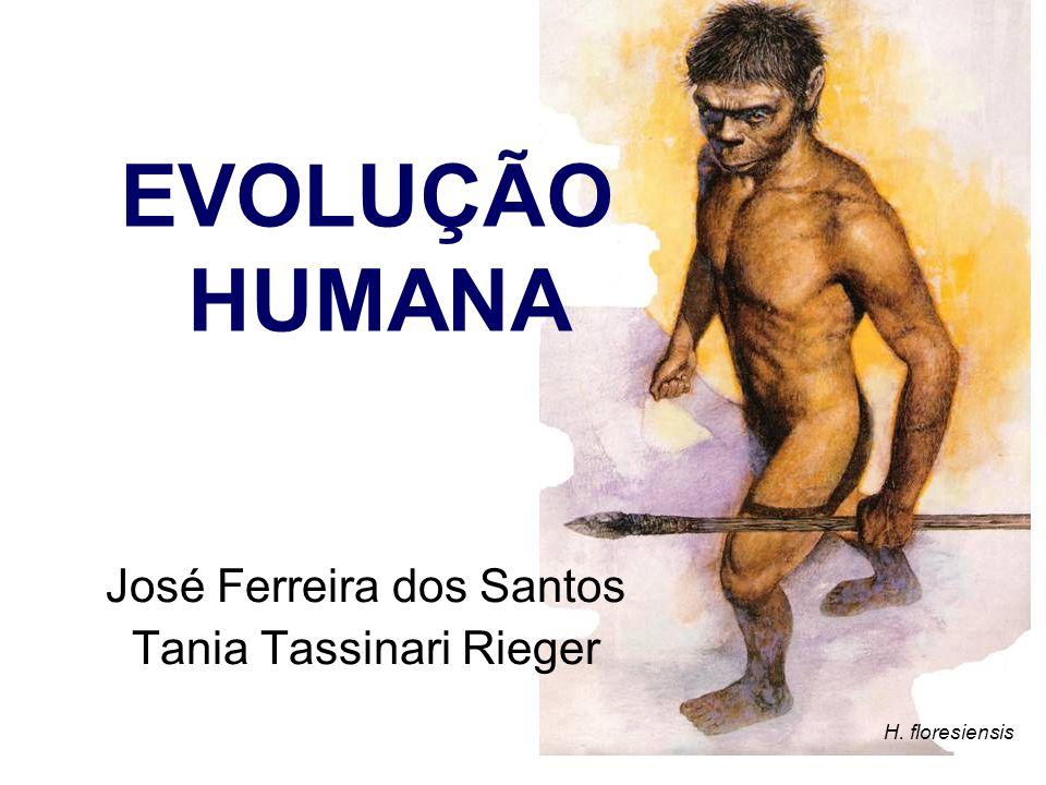 José Ferreira dos Santos Tania Tassinari Rieger