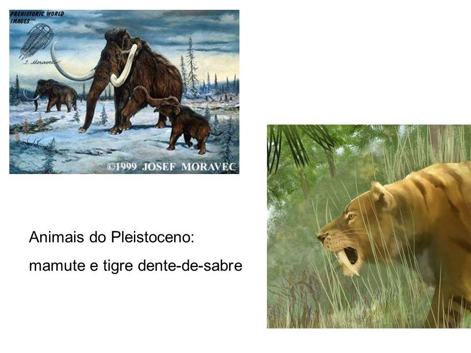 Animais do Pleistoceno: