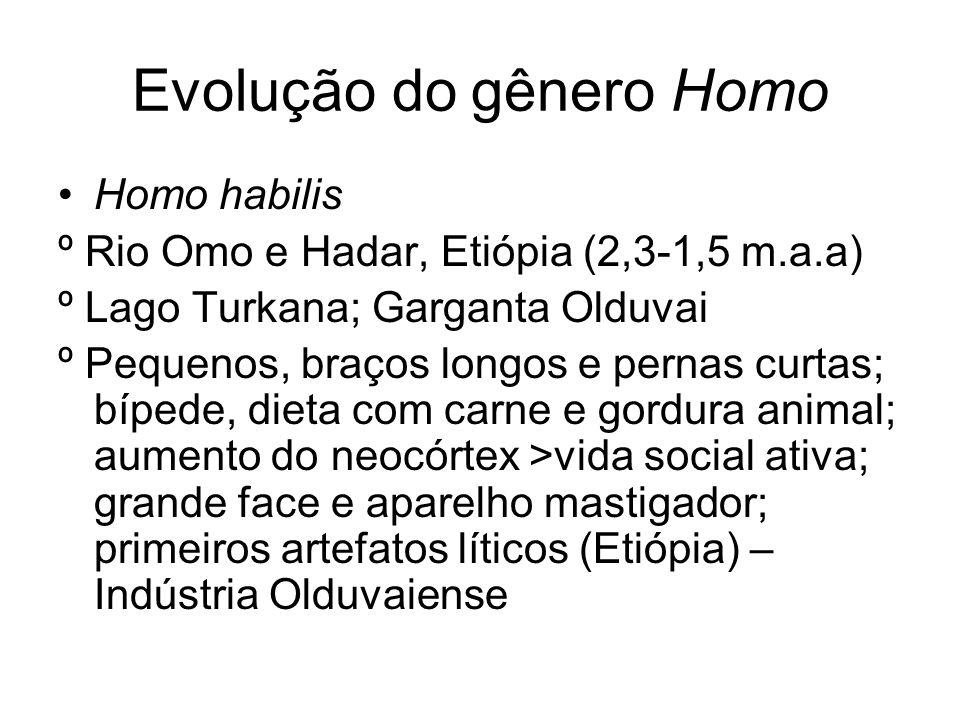 Evolução do gênero Homo