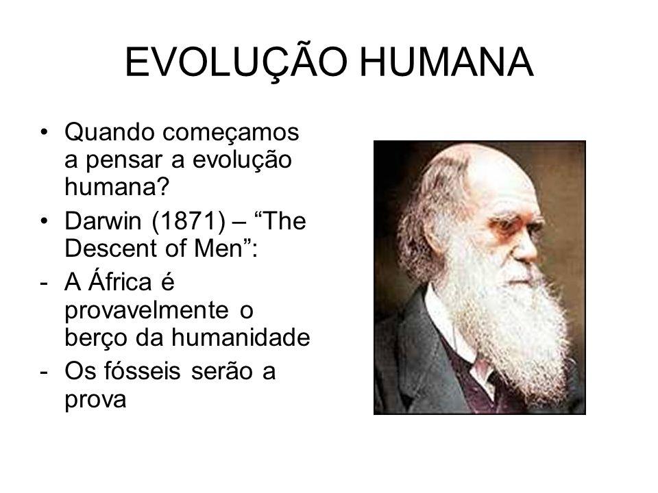 EVOLUÇÃO HUMANA Quando começamos a pensar a evolução humana