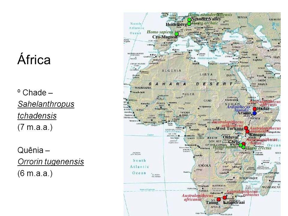 África º Chade – Sahelanthropus tchadensis (7 m.a.a.) Quênia –