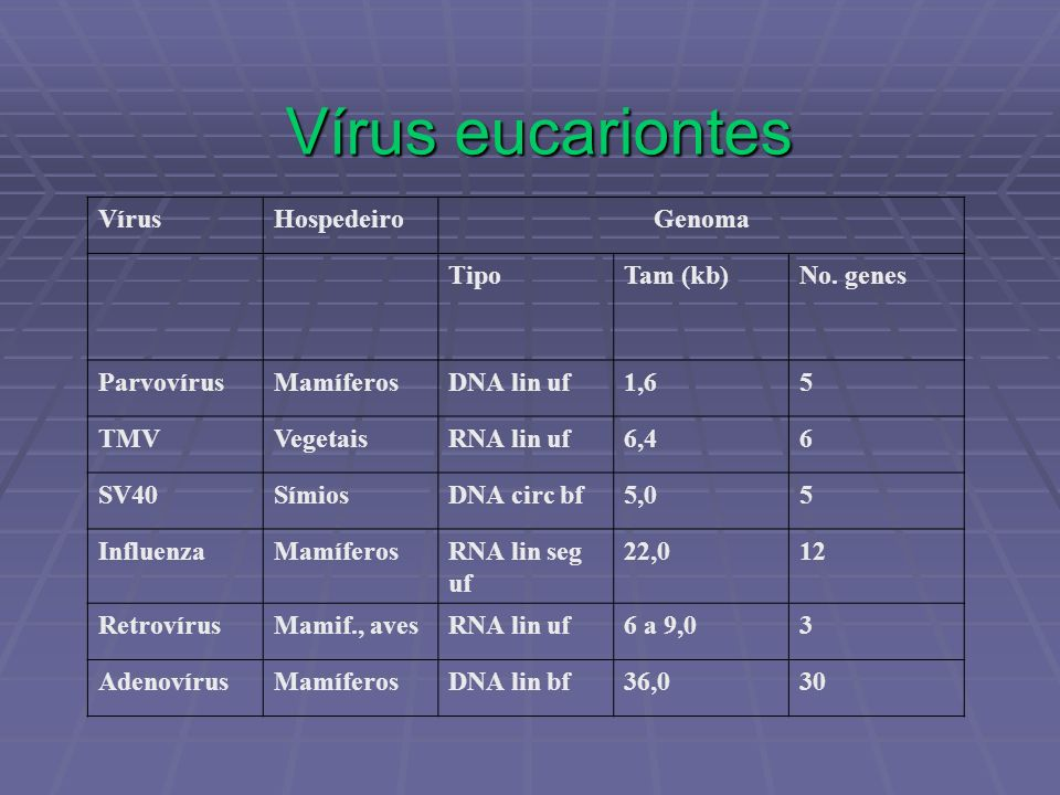 Vírus eucariontes Vírus Hospedeiro Genoma Tipo Tam (kb) No. genes