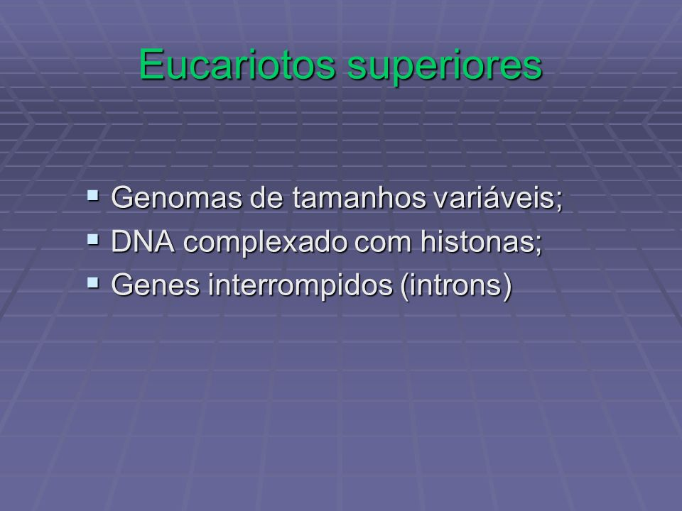 Eucariotos superiores