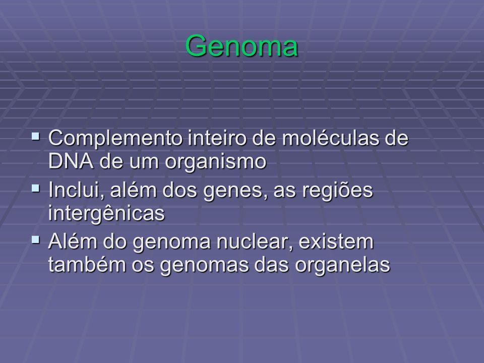 Genoma Complemento inteiro de moléculas de DNA de um organismo