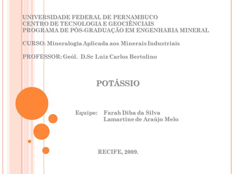 Equipe: Farah Diba da Silva Lamartine de Araújo Melo
