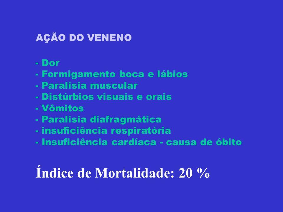 Índice de Mortalidade: 20 %