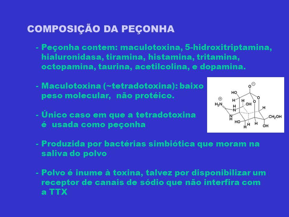 COMPOSIÇÃO DA PEÇONHA - Peçonha contem: maculotoxina, 5-hidroxitriptamina, hialuronidasa, tiramina, histamina, tritamina,