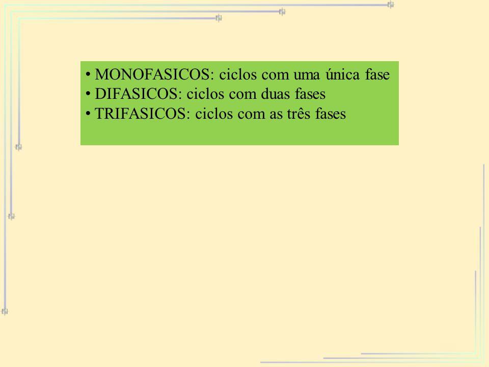 MONOFASICOS: ciclos com uma única fase