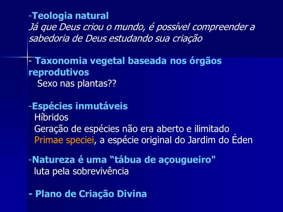 Teologia natural Já que Deus criou o mundo, é possível compreender a sabedoria de Deus estudando sua criação.