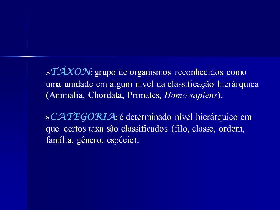 »TÁXON: grupo de organismos reconhecidos como uma unidade em algum nível da classificação hierárquica (Animalia, Chordata, Primates, Homo sapiens).