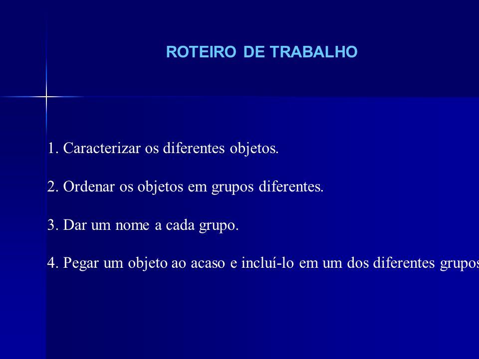 ROTEIRO DE TRABALHO 1. Caracterizar os diferentes objetos. 2. Ordenar os objetos em grupos diferentes.