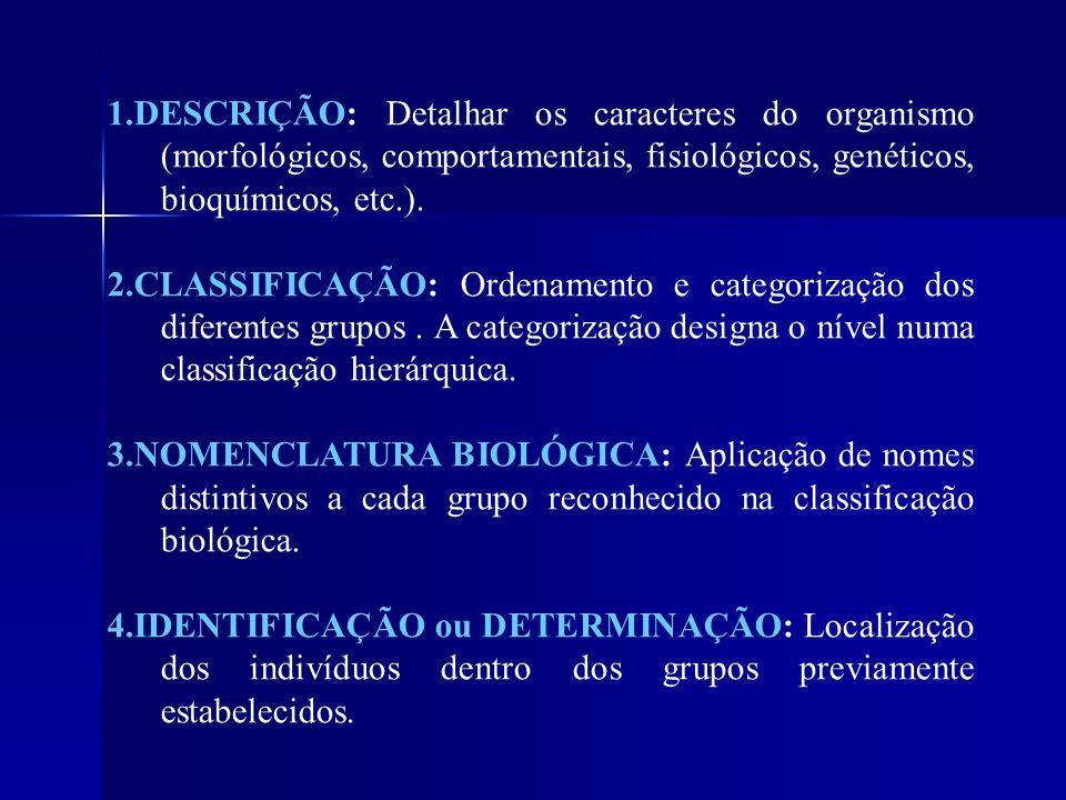 1.DESCRIÇÃO: Detalhar os caracteres do organismo (morfológicos, comportamentais, fisiológicos, genéticos, bioquímicos, etc.).