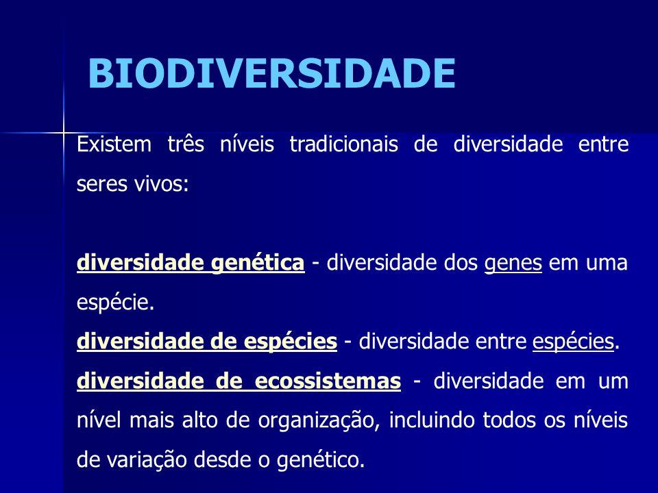 BIODIVERSIDADE Existem três níveis tradicionais de diversidade entre seres vivos: diversidade genética - diversidade dos genes em uma espécie.