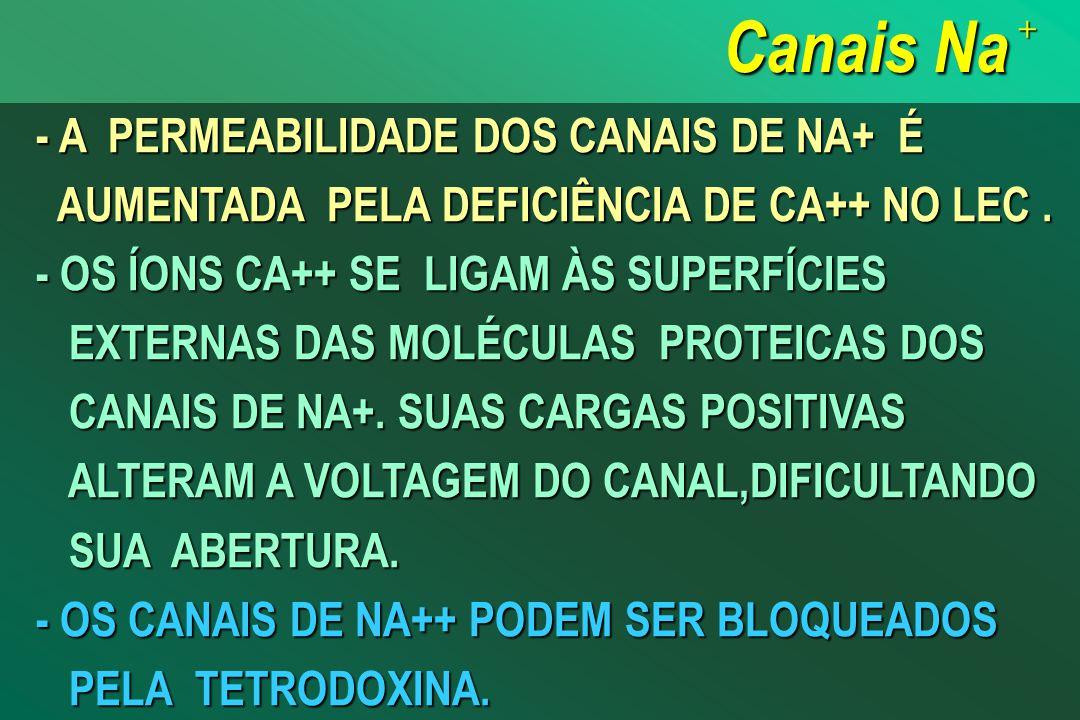 Canais Na +