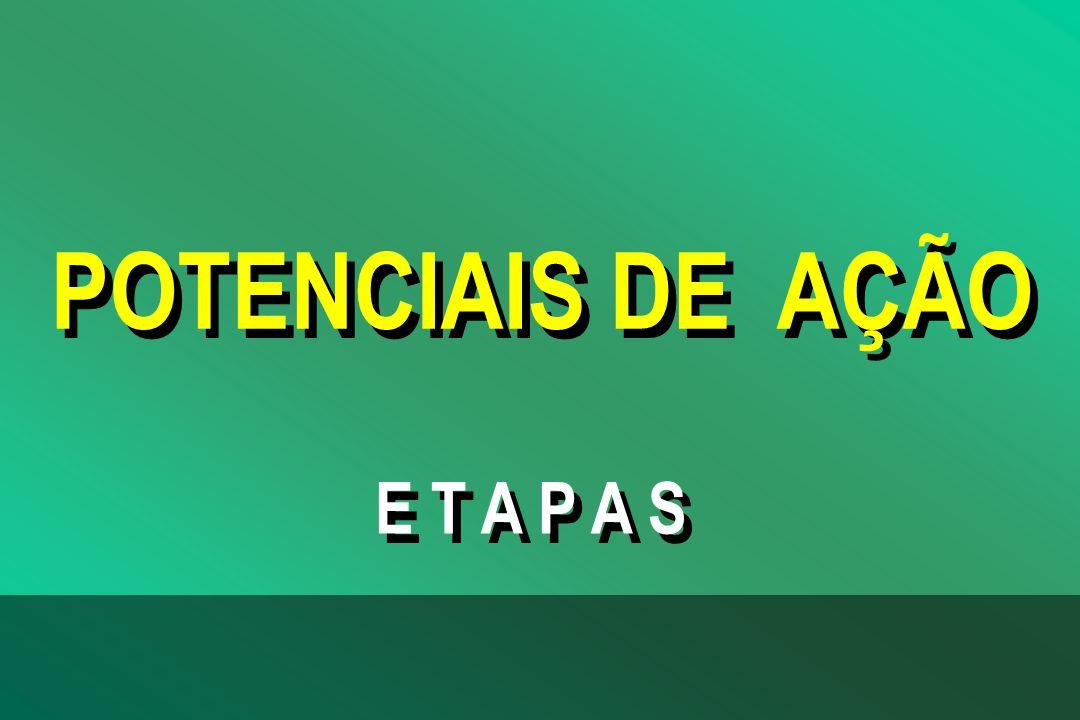 POTENCIAIS DE AÇÃO E T A P A S