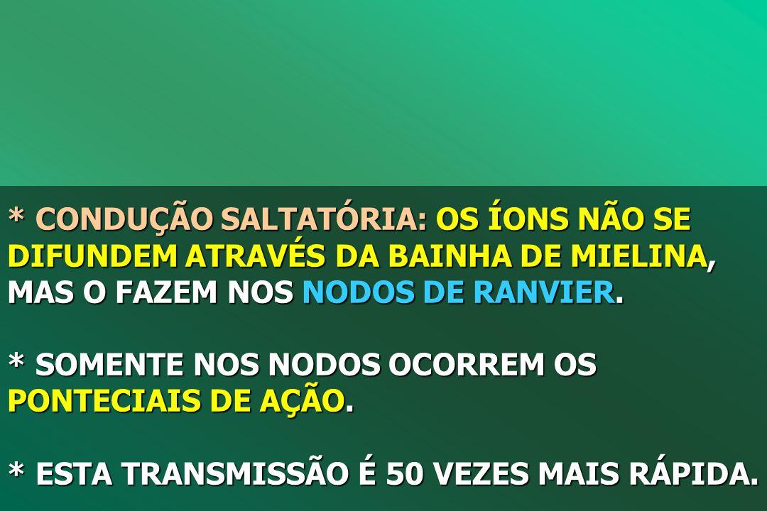 * CONDUÇÃO SALTATÓRIA: OS ÍONS NÃO SE DIFUNDEM ATRAVÉS DA BAINHA DE MIELINA, MAS O FAZEM NOS NODOS DE RANVIER.