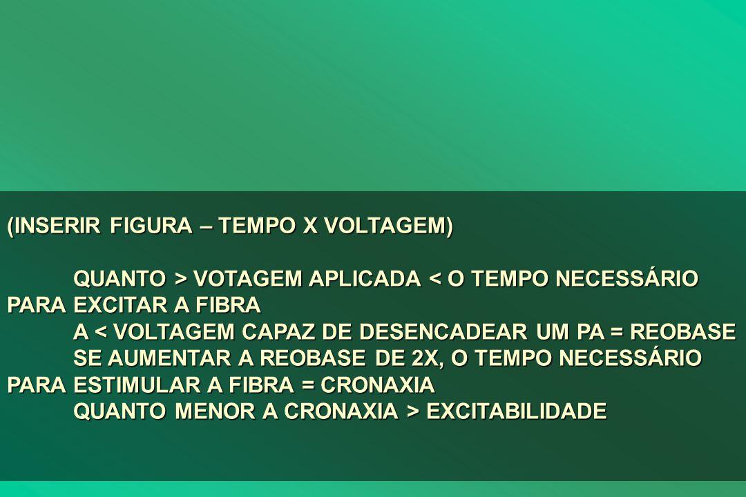 (INSERIR FIGURA – TEMPO X VOLTAGEM)