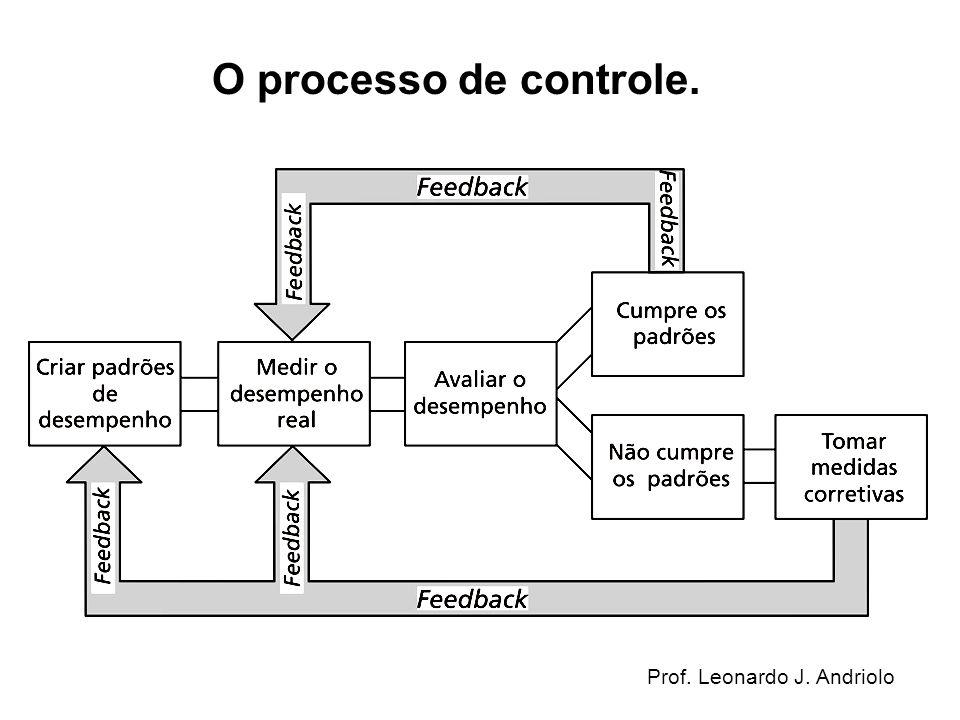 O processo de controle. Prof. Leonardo J. Andriolo