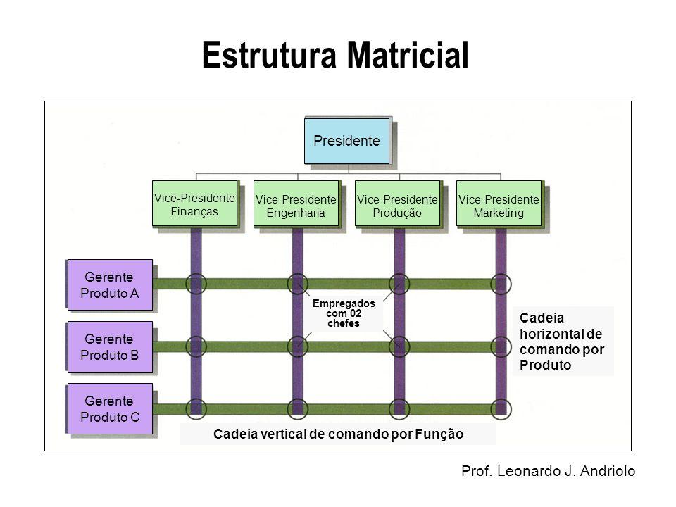 Cadeia vertical de comando por Função