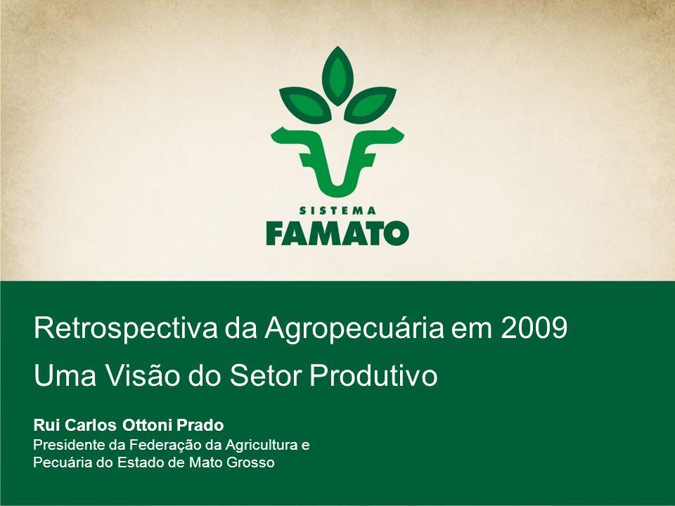 Retrospectiva da Agropecuária em 2009 Uma Visão do Setor Produtivo