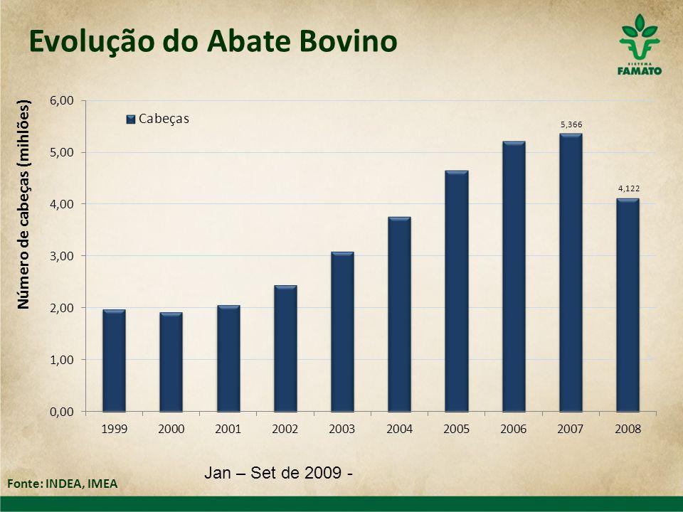 Evolução do Abate Bovino