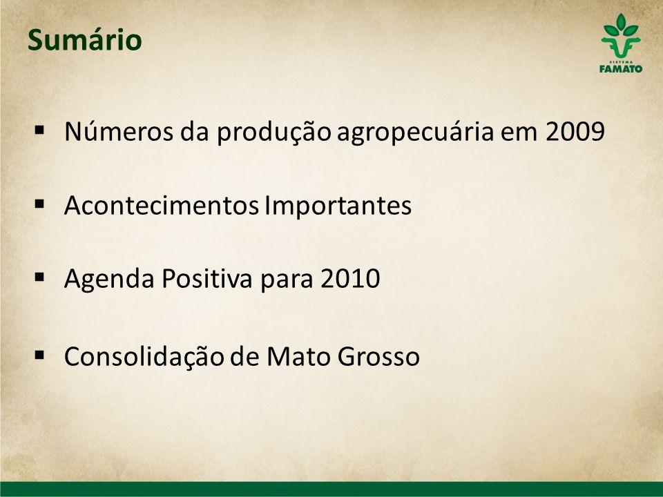 Sumário Números da produção agropecuária em 2009